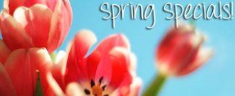 Spring Flowers '11 04